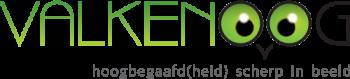 Valkenoog – hoogbegaafd(heid) scherp in beeld Logo